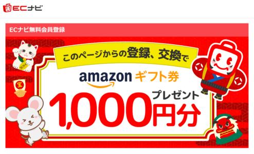 ecnavi-1000
