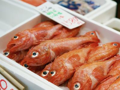 魚釣りを趣味から副業に変える2つの方法